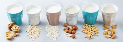 Día Mundial del Veganismo: especial leches vegetales